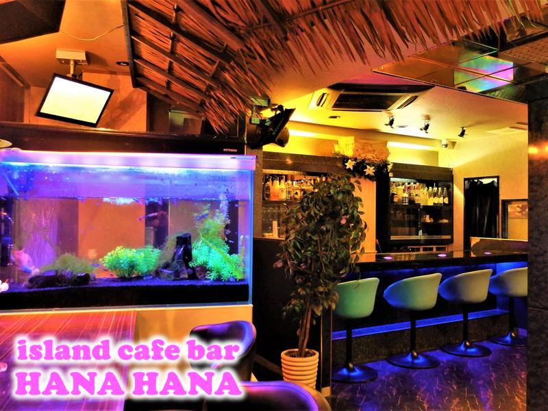 西川口ガールズバー:island cafe bar HANA HANA(ハナハナ)