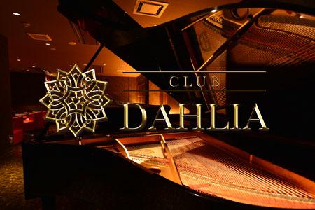 CLUB DAHLIA (ダリア)